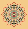 floral round decorative symbol ethnic decorative vector image
