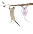 funny cats hanging from tree branch vector image vector image