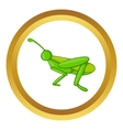 Grasshopper icon vector image