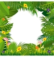 Jungle background with palm tree leaves vector image vector image