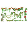jungle vines tropical tree branches with hanging vector image vector image