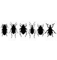 silhouettes of bugs vector image