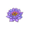 sketch lotus flower blossom blooming vector image