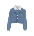 trucker denim jacket fashion style item vector image vector image