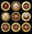 golden badge collection premium quality vector image vector image