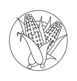 isolated two corn symbol vector image vector image