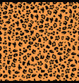 orange and brown leopard print seamless background vector image vector image