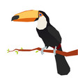origami toucan vector image vector image