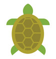 turtle icon vector image vector image