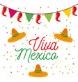 viva mexico poster colored hats and pennant vector image vector image