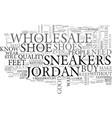 wholesale jordan sneakers text word cloud concept vector image vector image