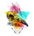 animal skull vector image vector image