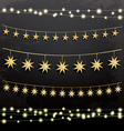 Garlands with Stars Decoration Set vector image vector image