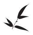silhouette bamboo leaves on white background vector image vector image