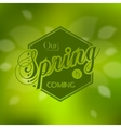 Stylish Spring seasonal card design vector image vector image