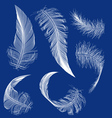 flying white feather vector image