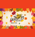 autumn colorful leaves frame hello autumn season vector image