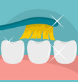 clean tooth icon flat style vector image vector image