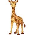 giraffe baby vector image vector image