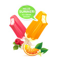Orange and raspberry popsicle ice-cream colorful vector image vector image