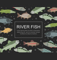 river fish banner template seafood market shop vector image