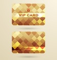 Vip cards with the abstract background vector image vector image