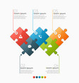 5 options infographic template vector image