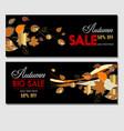 autumn sale flyer template vector image vector image