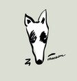 beautiful hand drawn cartoon style raccoon head vector image vector image