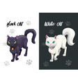 black and white cat icons vector image