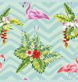 flamingo and tropical plants flowers vector image