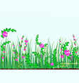grass nature flowers vector image vector image