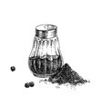 hand drawn black pepper shaker and heap ground vector image vector image