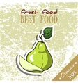 Healthy Food Pear vector image vector image