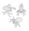 set of black and white spiders for coloring vector image vector image