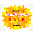 special offer thanksgiving sale with orange leaf vector image vector image