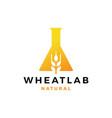 wheat lab logo icon vector image vector image