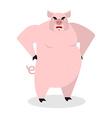 Angry pig Aggressive wild boar big boar grumpy vector image vector image
