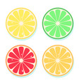 citrus slices of lemon orange lime and vector image