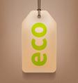 Eco Tag vector image vector image