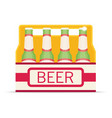 pack of beer bottles flat style icon vector image vector image