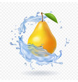 pear realistic fruit vector image