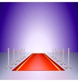 red carpet entrance with the stanchions vector image