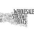 wholesale straw hats text word cloud concept vector image vector image