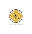 y letter logo with golden foil texture vector image