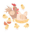 cute rooster hen and chickens vector image vector image