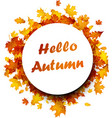 hello autumn background with golden leaves vector image vector image