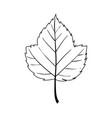 leaf line art contour drawing minimalism art vector image vector image