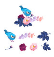 spring blue bird on flower branch watercolor kit vector image