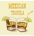 Two stemware of tequila with lime vector image